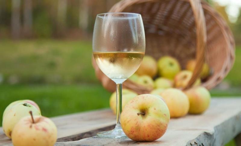 Как сделать вино из яблочного сока в домашних условиях (простые рецепты)